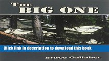 Read The Big One, The True Story of an Epic Search to Find a Missing Small Plane Lost for Years