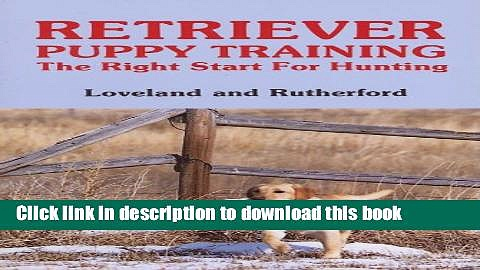 Read Retriever Puppy Training: The Right Start for Hunting  PDF Free