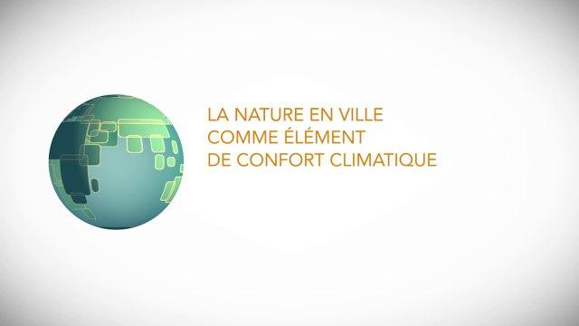 La nature en ville comme élément de confort climatique