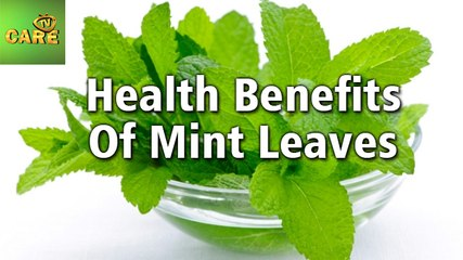 Health Benefits Of MINT LEAVES | Care Tv