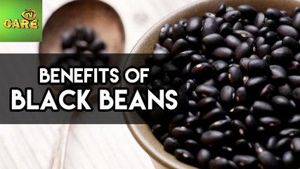 Benefits Of Black Beans | Care Tv