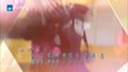 【HD】2016警花与警犬第二十三集 公安刑警 于和伟、侯梦莎、黄梦莹主演