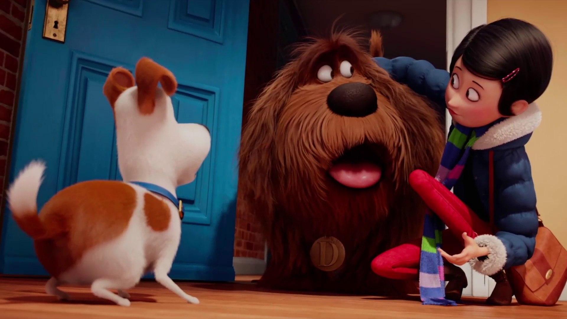 A Vida Secreta Dos Bichos O Filme Completo Dublado pets - a vida secreta dos bichos - trailer oficial 3 dublado