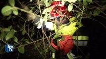 Var : près de 600 hectares ravagés dans un incendie