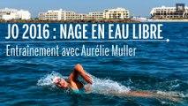 Nage en eau libre : à l'entraînement avec Aurélie Muller pour les JO