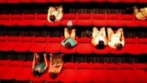 teaser - Débat : le cinéma comme acte de Résistances - Festival résistances 2016