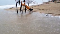 Shunami en playas de Campoamor (Orihuela Costa) Alicante 25
