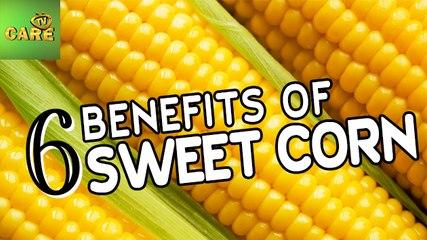 6 Benefits Of Sweet Corn | Care Tv
