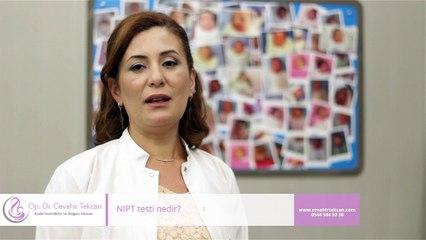 NIPT testi nedir?