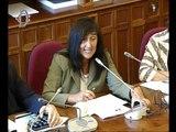 Roma - Audizione ambasciatore Massari, Unione europea (21.07.16)