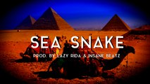 Ethnic Arabic Rap Beat Hip Hop Instrumental - Sea Snake (prod. by Lazy Rida Beats & Insane Beatz)