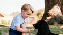 It's Prince George's birthday and the internet loves it