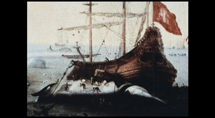 Le Cinéma de Mario Ruspoli - Vive la baleine - Extrait