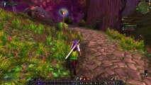 Le Gwiig  ( elfe de la nuit guerrière ) VS WoW n°3