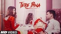 Tere Bina HD Video Song Sunny Dyal 2016 | New Punjabi Songs