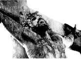 Ahmed Deedat, Dr Zakir Naik Did Jesus Die On Cross ?