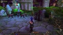 Le Gwiig  ( elfe de la nuit guerrière ) VS WoW n°4