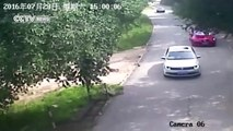 Footage shows shocking tiger attack in Beijing's wildlife park - YouTube