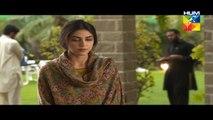 Mann Mayal Episode 27 HD Full Hum TV Drama 25 July 2016