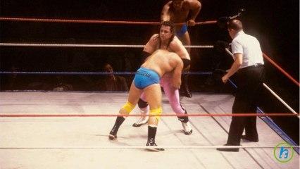 Bret Hart, Wrestling Legend, Diagnosed wth Prostate Cancer