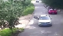 Tiger caught on video attacking woman at Beijing wildlife park