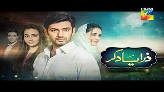 Zara Yaad Kar Episode 21 Promo on Hum TV - 26 July 2016