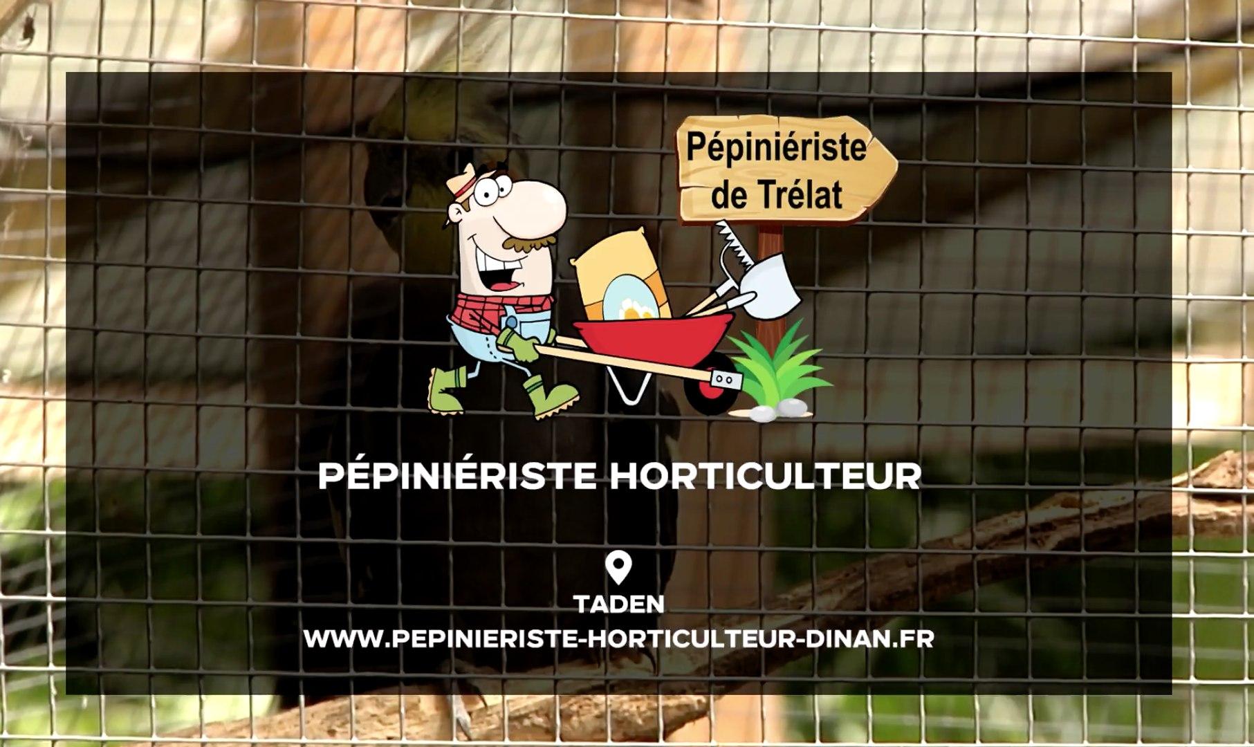 Horticulteur Val D Oise pépinière - horticulture - plantes, arbres, fleurs - aménagement - jardin à  taden (22)