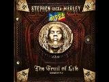 Stephen Ragga Marley - When She Dances (ft. Pitbull)