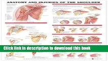 Download Anatomy and Injuries of the Shoulder Anatomical Chart Free Books