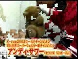 Andy Souwer vs. Kenichi Ogata (Part.).flv