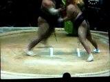 willy commentateur de combat de sumo