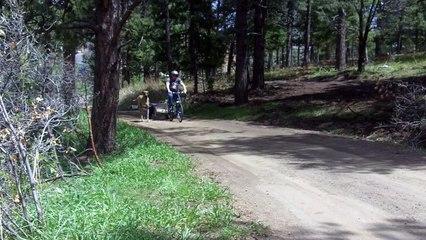 Vous voyez le dogue allemand courir à côté du vélo? Eh bien, regarder la suite... MDR!
