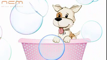 Posh Paws Grooming Salon & Daycare- Dog Boutique