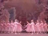 Tchaikovski - Ballet Casse-noisette - Valse des fleurs