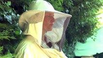 Le miel de Suresnes