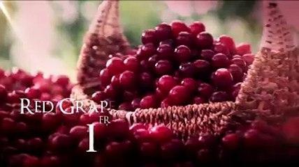 Nestlé Fruita Vitals-SD