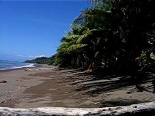 costa rica plage de drake bay