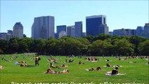Bir park ortam sesleri (kuş şarkı, çığlık ve çocuk, bisiklet, müzik, sesler, böcekler oynarken, şehirden sesler)
