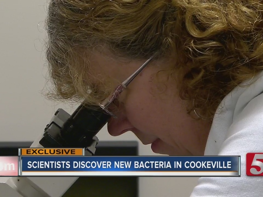 Hot Tub Bacteria From Cookeville Could One Day Help Treat Cancer