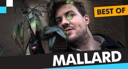 Le Dézapping - Best of Mallard