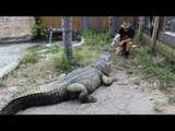 Gator Trainer Shares His Love of Star Wars With His Gators