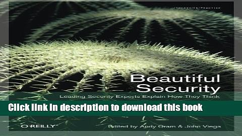 Books Beautiful Security: Leading Security Experts Explain How They Think Full Online