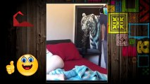 Just For Laughs Gags 2016 NEW Naughty Pranks 2016