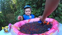 Paw Patrol Orbeez Crush ⚫ Pool Filled With Orbeez