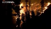 Canarie: brucia carta igienica, in fiamme 4mila ettari di vegetazione a La Palma