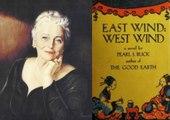 Novels Plot Summary 6 East Wind West Wind