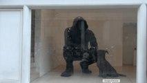 Les sculptures monumentales de Cyrille André - Nec Plus Ultra