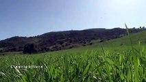 Le changement climatique au Maroc - L'agriculture