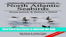 [Download] Storm-Petrels and Bulwer s Petrel (Multimedia Identification Guides to North Atlantic