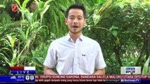 Presiden Ajak Pengusaha Semarang Ikut Tax Amnesty